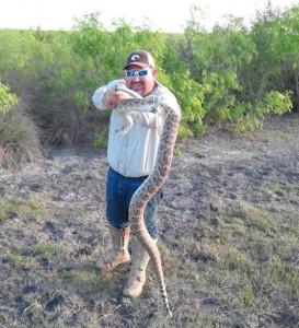 tx sarge snake