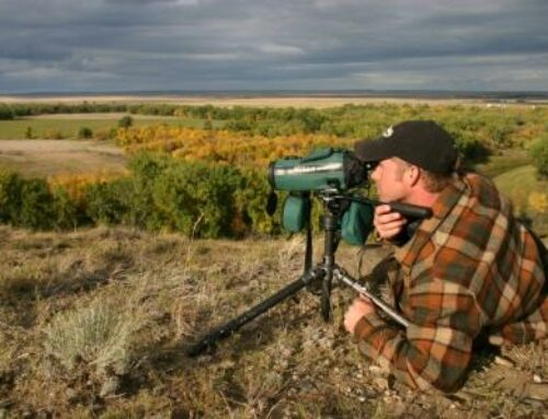 3 Tips For Glassing Deer In Big Country