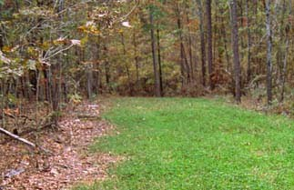 Mike Hanback S Big Deer Hunting Advice And Tips Latest