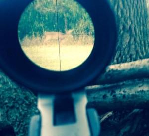 iphone scope buck photo