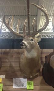 ohio danflous award buck
