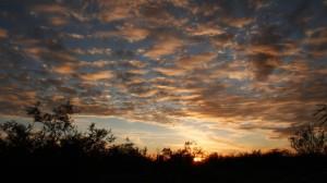 tx sunset