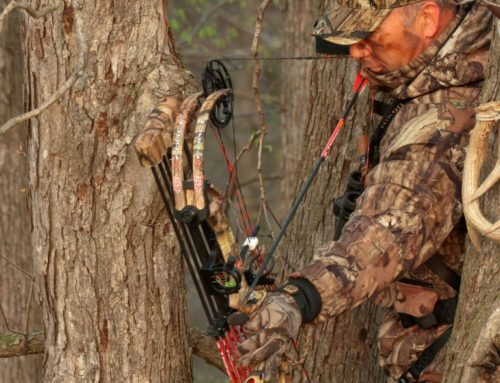 How Many Tree Stands Do You Need To Bowhunt 100 Acres?