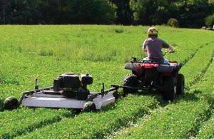 mow plot