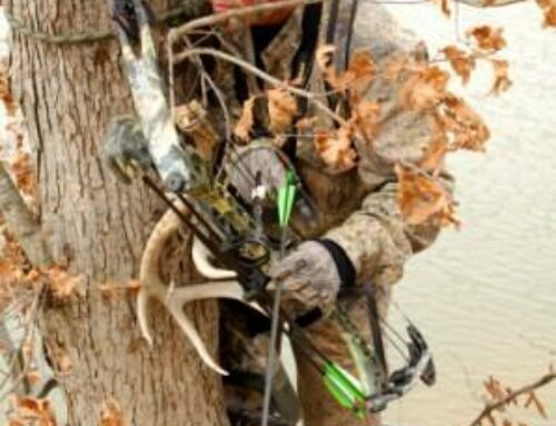 How To Hunt A Buck In A Swamp