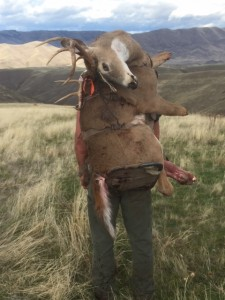 whitetail backpack