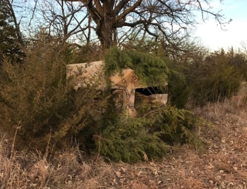 VIDEO: How To Hunt Deer From A Ground Blind