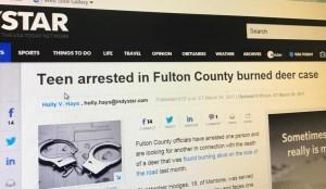 burn deer