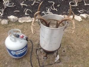 boil skull