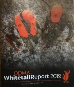 qdma 2019 report