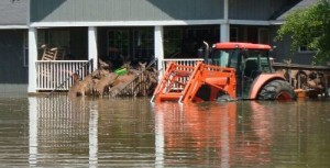 deer floods
