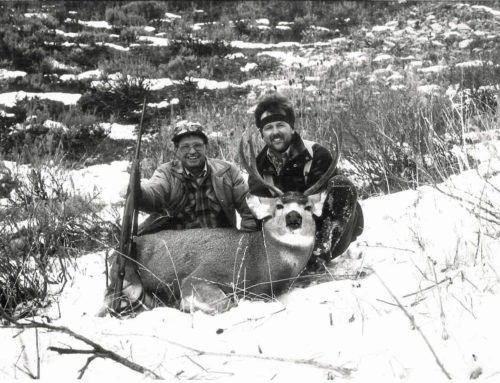 How To Still-Hunt A Buck Deer