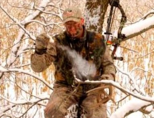 Deer Hunting: How To Use The Wind To Your Advantage