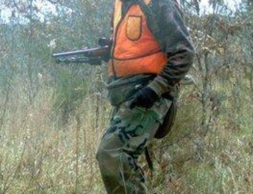 Are Most Deer Poachers Also Drug Dealers?