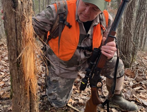 How To Read Whitetail Buck Rubs