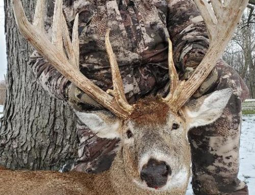 Indiana: Ivory Buck Gross Scores 225 6/8!