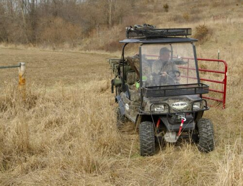 When To Drive To Your Tree Stand